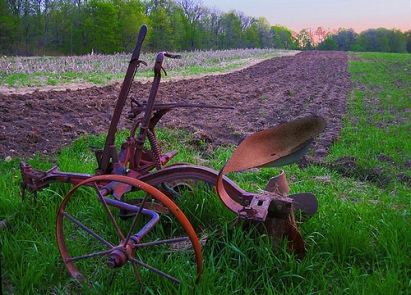 abandoned plow